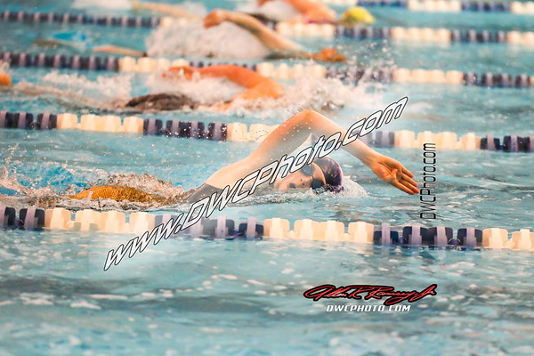 2017-02-11 Swim Region Finals Campbell Co