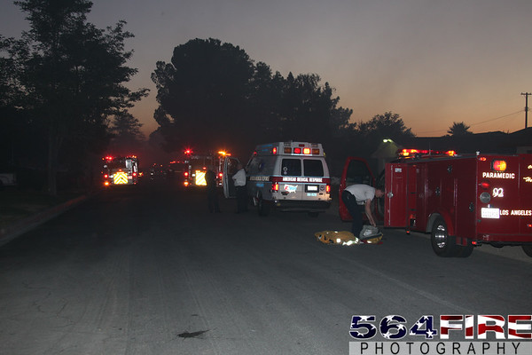 LACoFD - Structure - 7-4-10