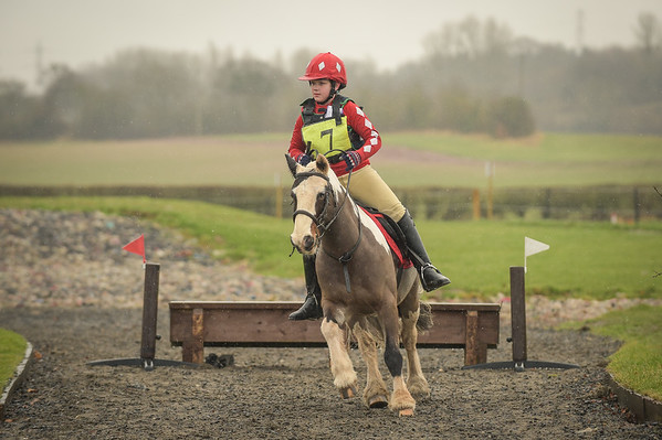 Lincomb EC, Arena eventing, 20th January 2018