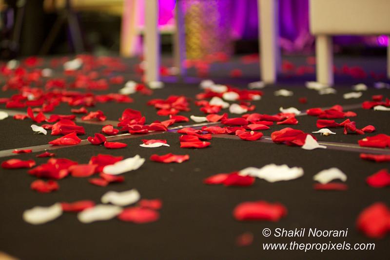 Naziya-Wedding-2013-06-08-02062.JPG