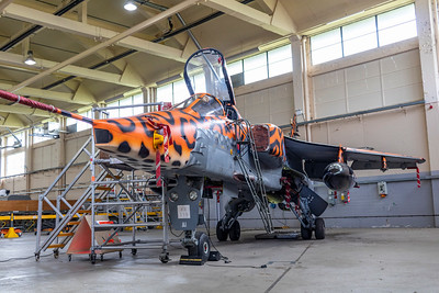 RAF Cosford Threshold.Aero - Hanger shoot 15-08-19