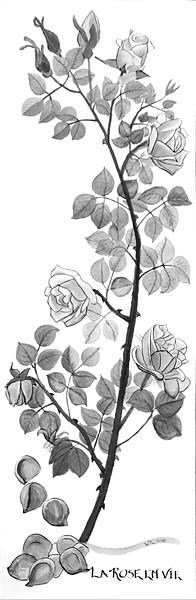 Roses for Inez