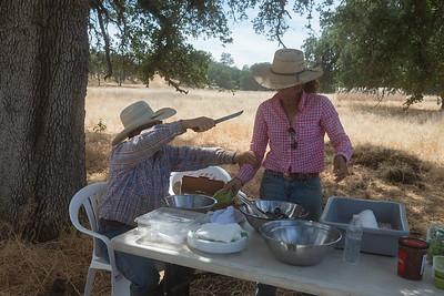 5-30-2015 Yolo Land & Cattle