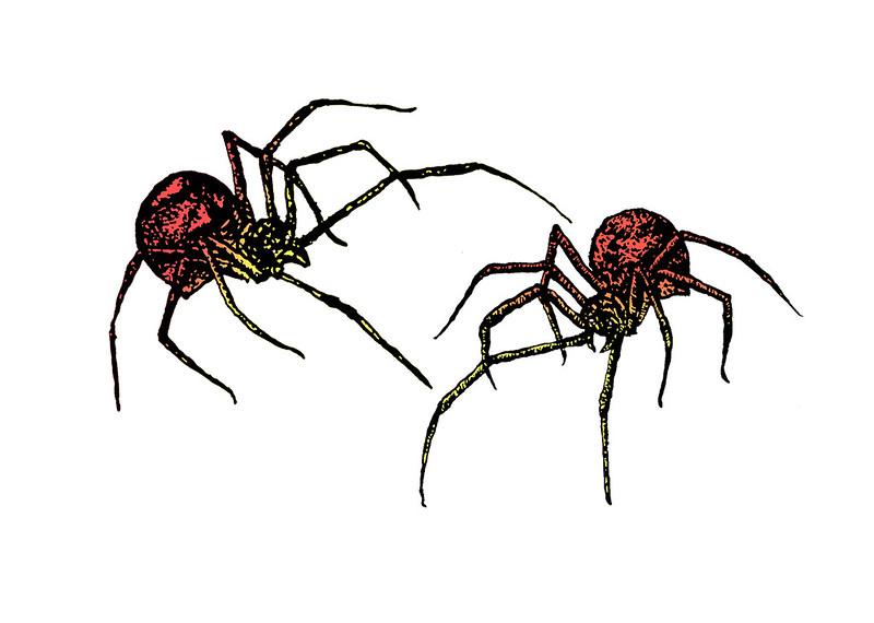 PIDERS.jpg
