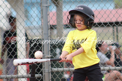 Youth Baseball/Softball