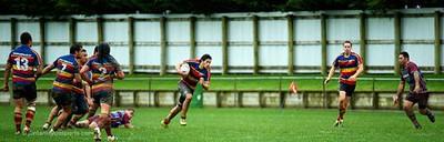 2011 Hardham Cup