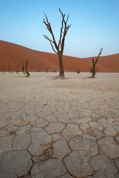 Namibia 69A4995.jpg