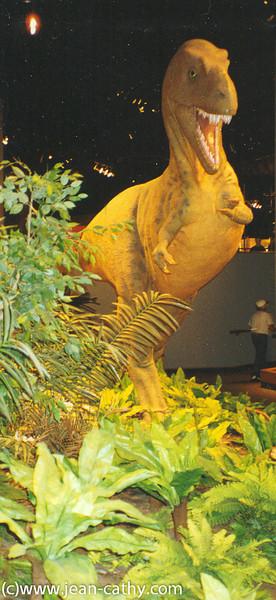 Alberta 1996 -  (25 of 33)
