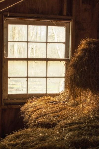 Barn Window S44A3380.jpg