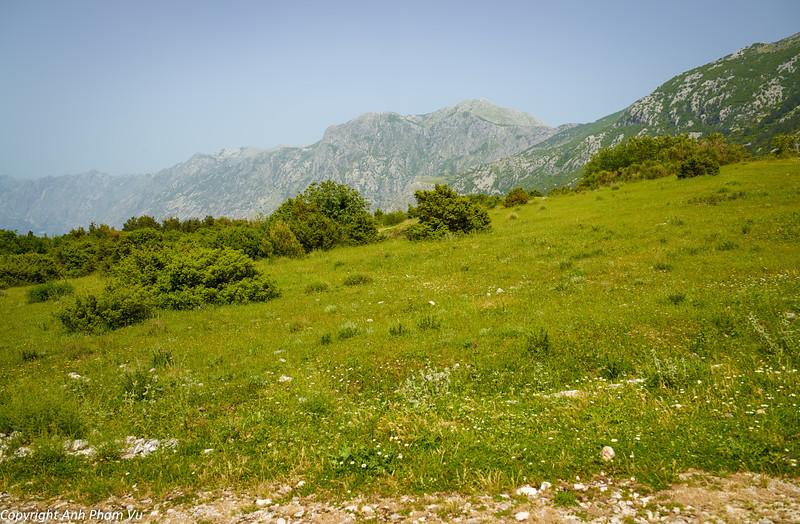 Uploaded - Montenegro May 2013 278.jpg