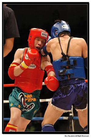 2007 香港泰拳冠軍爭奪戰