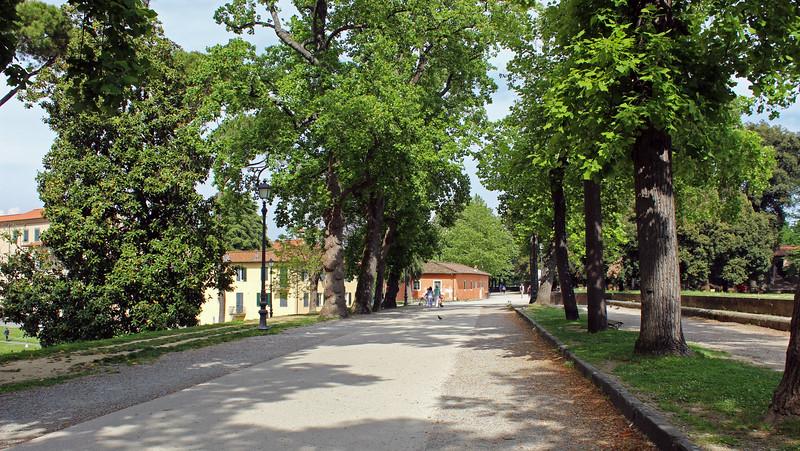 Italy-Lucca-35.JPG