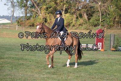 Open Hunter Under Saddle