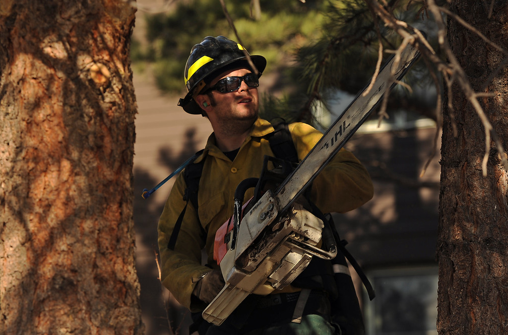 . Wildland firefighters Chris Wetzel,,  from Lafayette Fire,  cuts lower limbs from trees near  the Moraine Park Vistor\'s Center to keep fire from climbing into trees and potentially alighting the center on December 2nd, 2012.