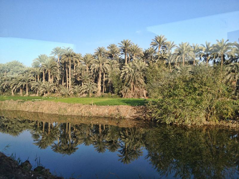 05 Cairo Streets 030.JPG