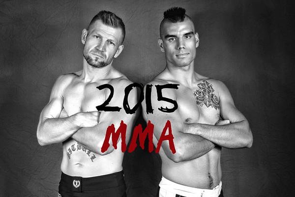 2015 Fight Album