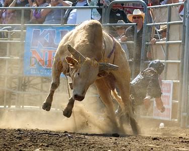 Bull Riding 2012