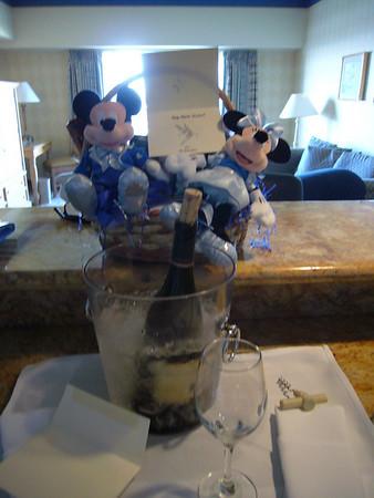 Disneyland 2008 with The Swetts
