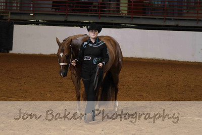 Day 2 - Grand Reserve Stallions (NP & Perf Stallion)