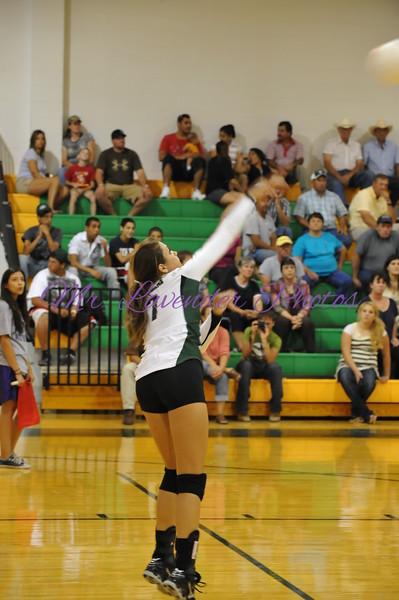 2010 High school Volleyball Season