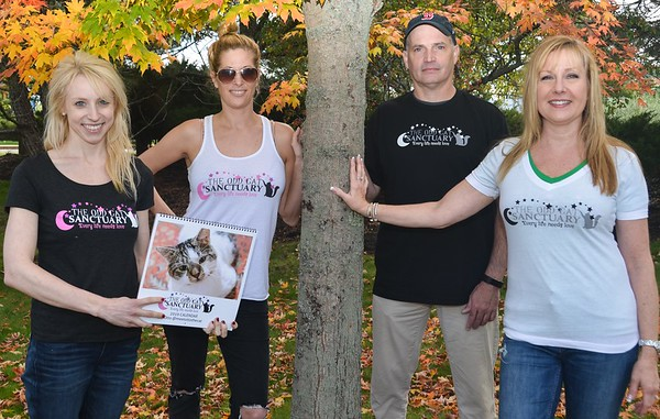 Odd Cat Sanctuary Tee Shirts