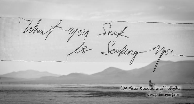 """""""What you seek is seeking you."""""""