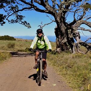 Mountain Biking on Mana Road