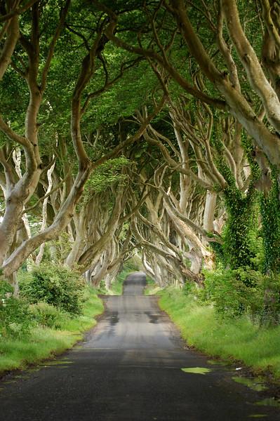 Irlande - 2009