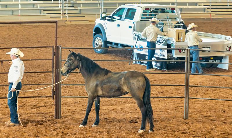 Arizona Horsemans Challenge and Expo  April 20, 2019  06_.jpg