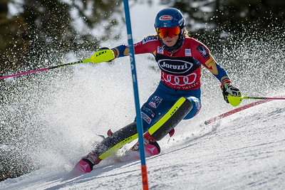 FIS Alpine Skiing World Cup