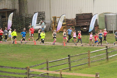 Run the Vineyards - Ingleside Vineyards 5K (2019)