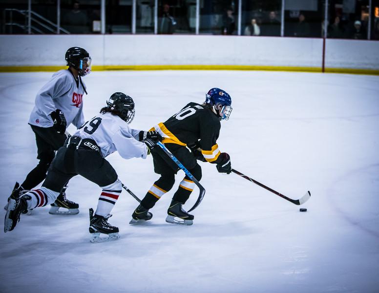 Bruins2-416.jpg