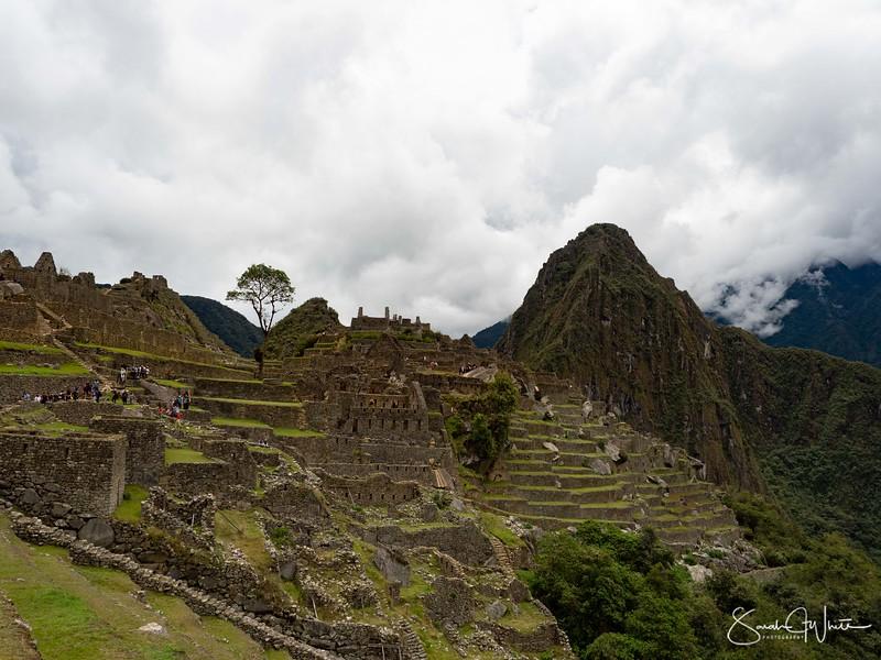 Peru-19102019-1313.jpg