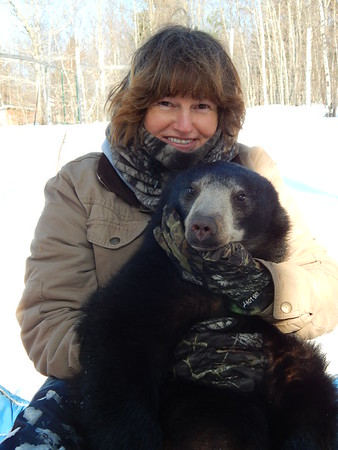 Dawn L. Brown A Bears Second Chance  Maine Black bear photos