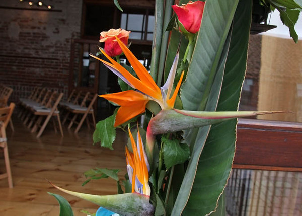 Beautiful birds of paradise flowers at a wedding at Dairy Barns