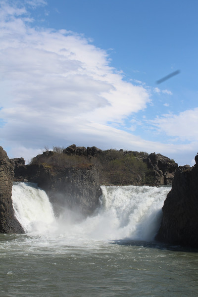 2018 Iceland-0303.jpg