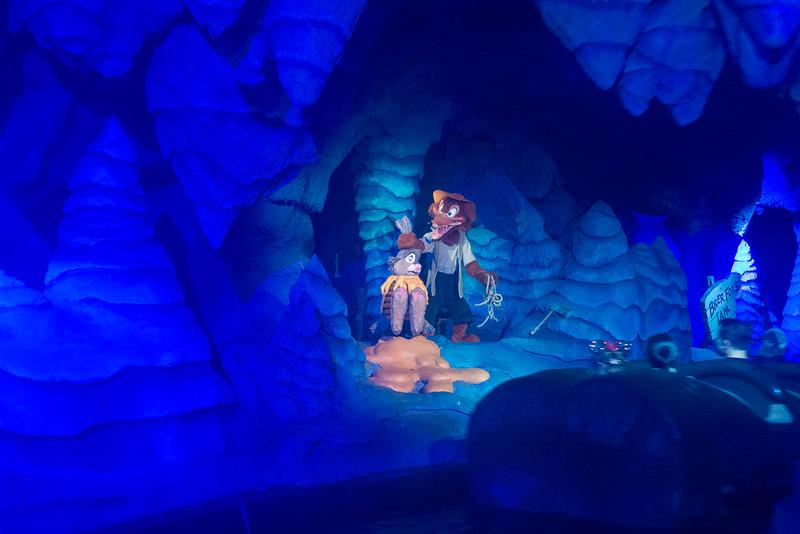 Briar Patch NO! - Magic Kingdom Walt Disney World