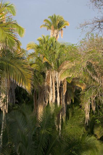 20070519_Mexico_251