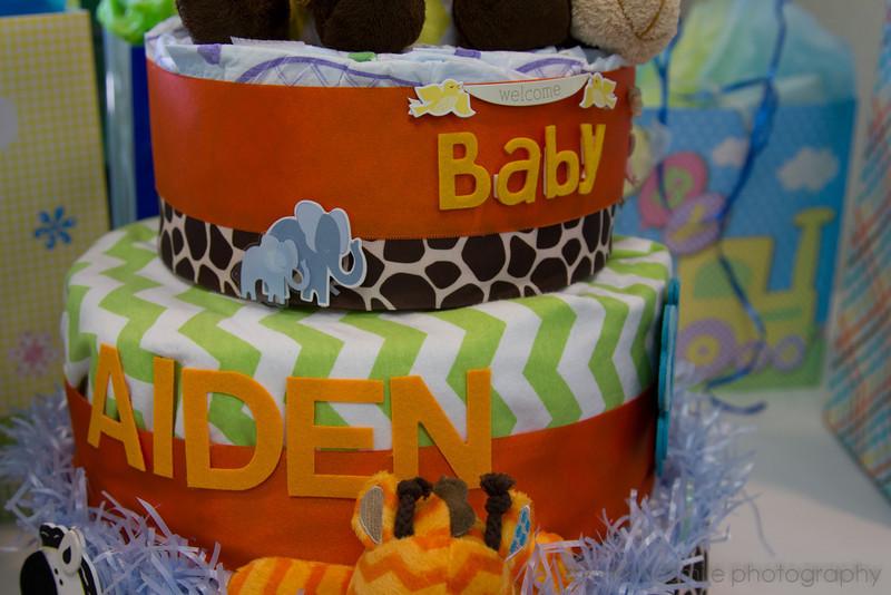 Baby Aiden's Shower-3354.jpg