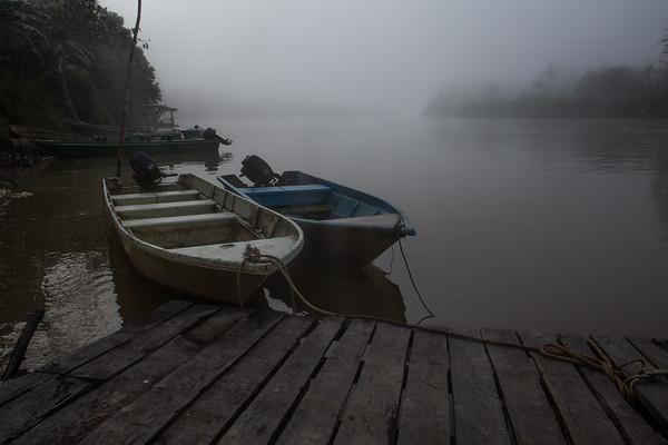 Solastalgia: The Misty Light of Borneo.