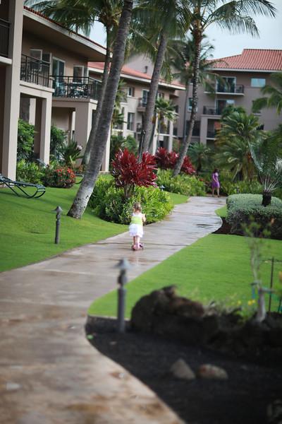 Kauai_D4_AM 020.jpg