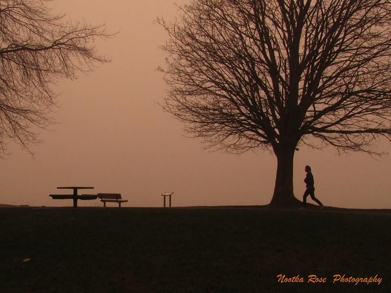 Fog on the Barrow Downs   wm  .jpg