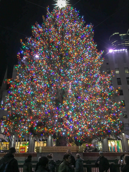NYC Christmas TourHD (108 of 165).jpg