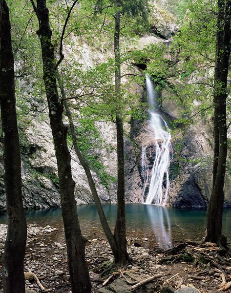 Barranca del Cobre National Park, MEX /  Cerocahui Falls pour over granite cliff face with silhouetted Arizona Alders, Alnus oblongifolia, in the Urique Canyon complex.896V3