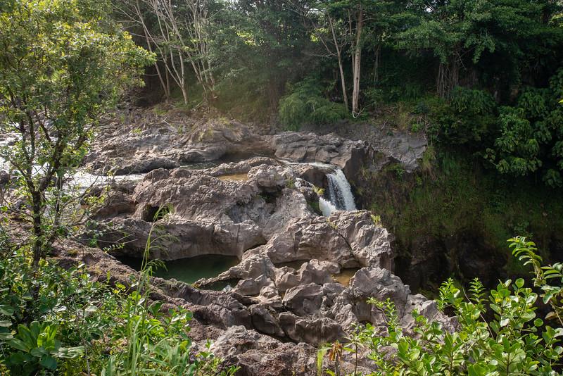 Hawaii2019-187.jpg