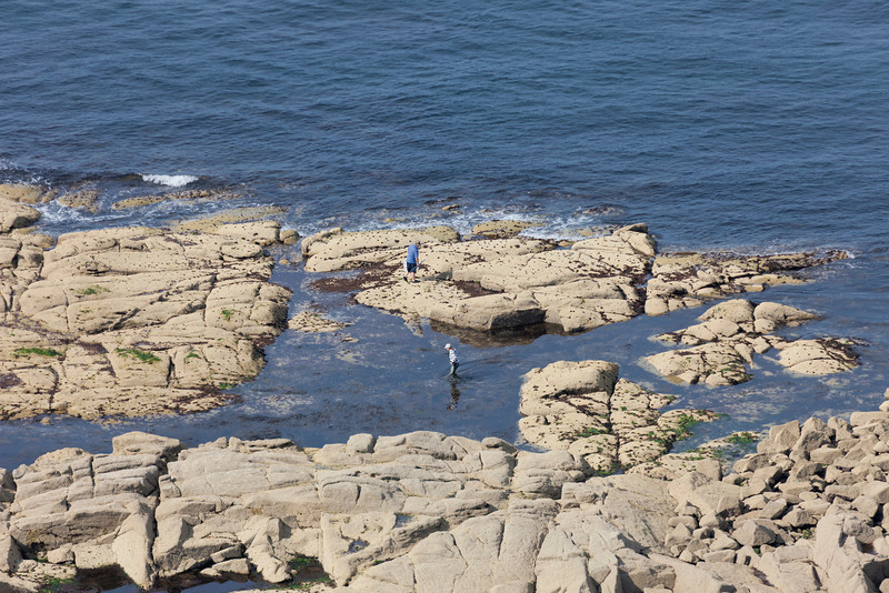 Barfleur, France - July 1, 2011: Aerial view of angler on flat rocks in sea at low tide in Barfleur, France. People enjoy catching fishes and looking for mussels and shellfishes in the tidal pools.