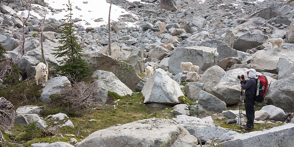 Mt. Stuart Ice Cliff Glacier, June 16, 2013