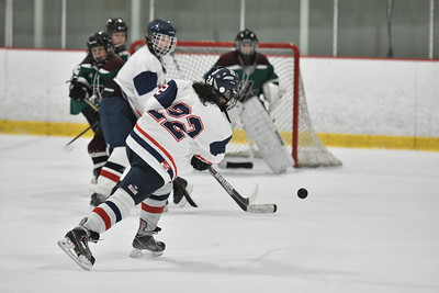 2018-2019 Medway Ashland Hockey Season