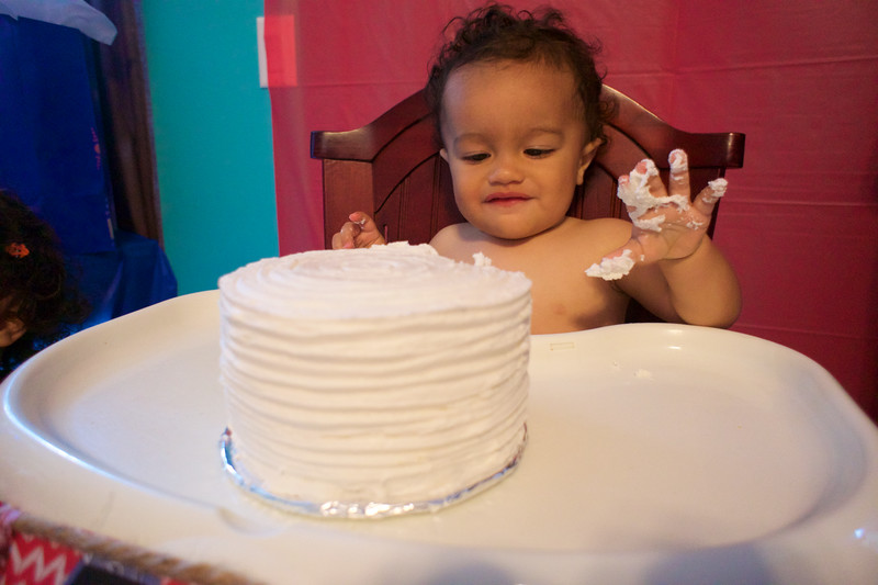 LINCOLN 1st BIRTHDAY PARTY_ 97.jpg