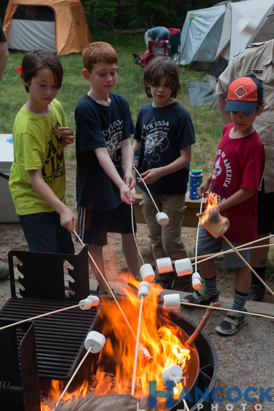 Cub Scout Camping Leeslyvania 2018-170.jpg